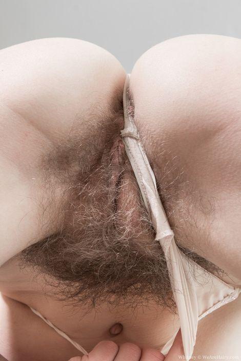 Красивая пушистая возбужденная вульва 18-летней цыпки на секс-фото онлайн